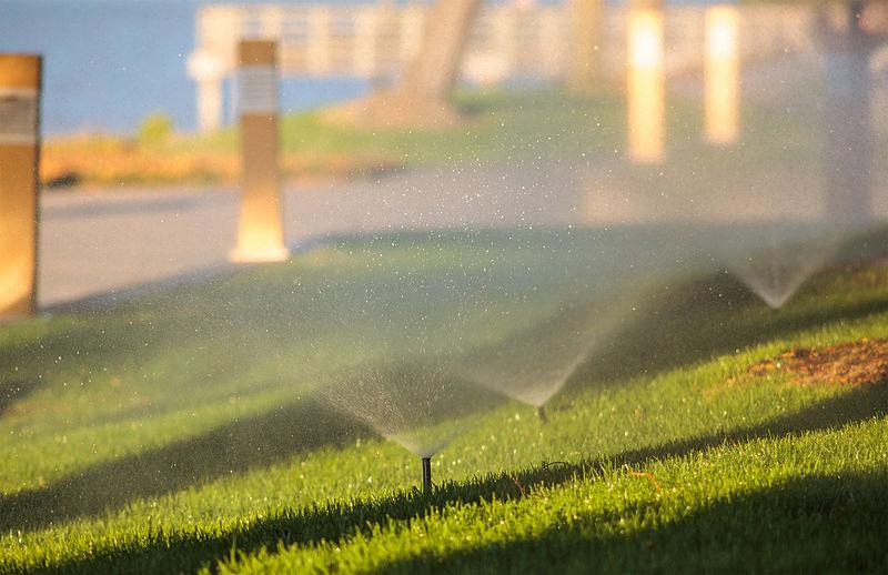 drainage-irrigation-wilhelm-brothers-sarasota